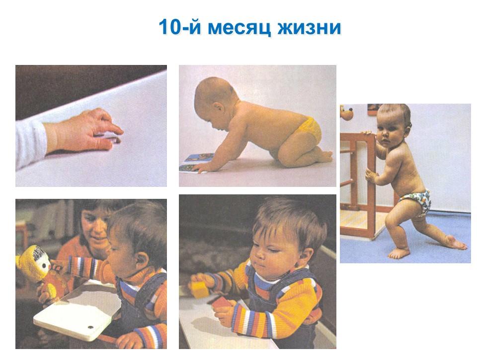 Фото детей 10-го месяца жизни