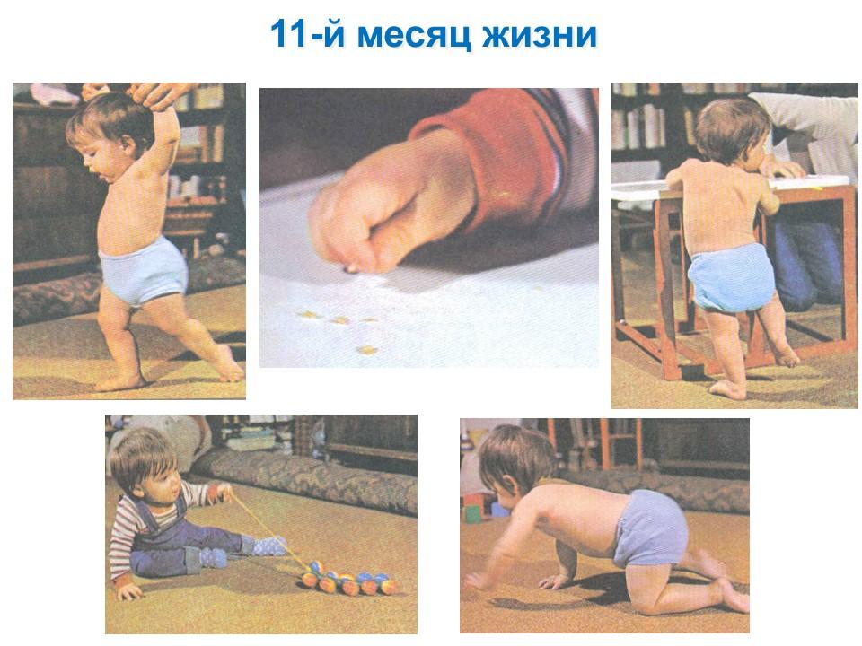 Фото детей 11-го месяца жизни