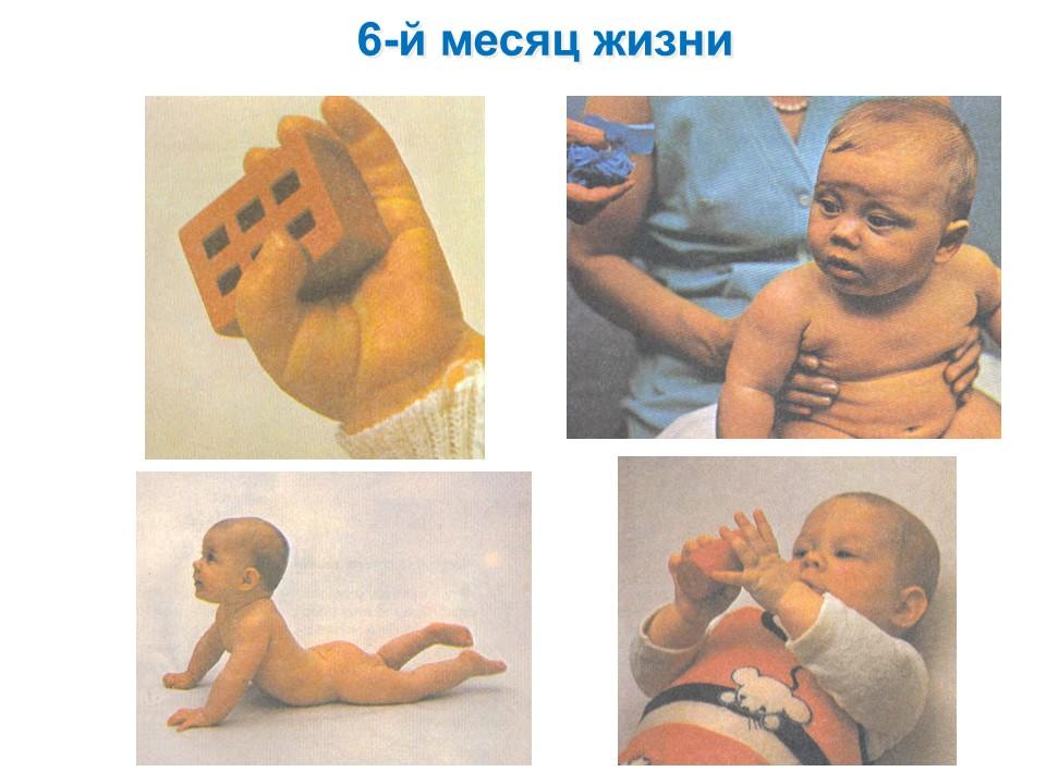 Фото детей 6-го месяца жизни